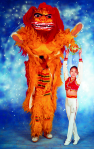 Chinese Acrobats 11